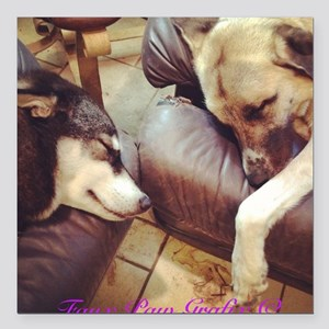 """Two Dogs Sleeping Square Car Magnet 3"""" x 3"""""""