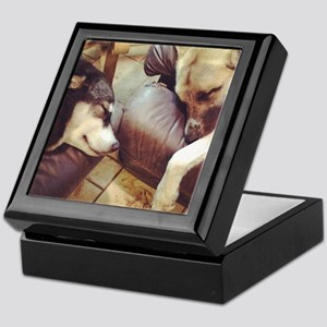 Two Dogs Sleeping Keepsake Box
