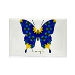 Charisma Butterfly Rectangle Magnet (100 pack)
