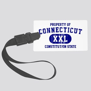 Property of Connecticut the Constitution State Lar