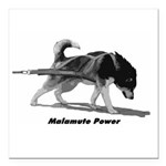 "Malamute Power Square Car Magnet 3"" x 3"""