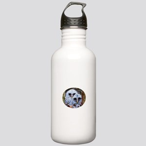 barred owl chicks Stainless Water Bottle 1.0L