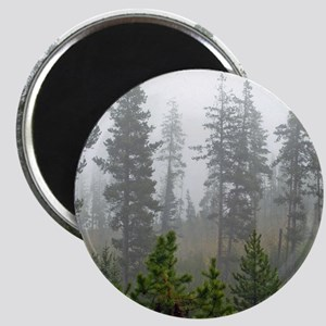 Misty forest Magnet