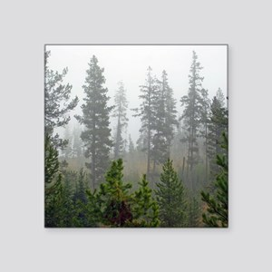 "Misty forest Square Sticker 3"" x 3"""