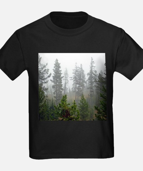Misty forest T
