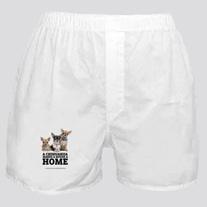 Home with Chihuahuas Boxer Shorts