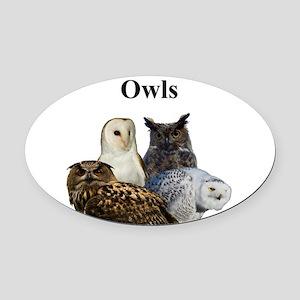 Owls Oval Car Magnet