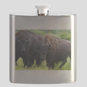 Bison Flask