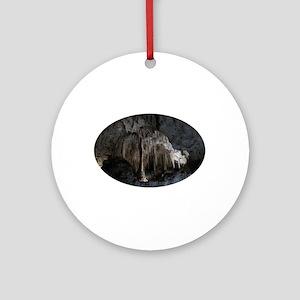 Phantom of the Cave Revealed Ornament (Round)