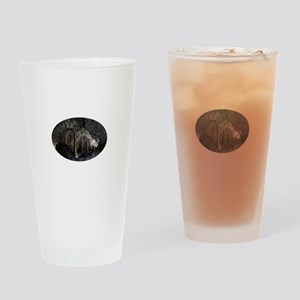 Phantom of the Cave Revealed Drinking Glass