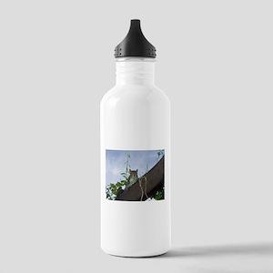 Wild squirrel design 1 Stainless Water Bottle 1.0L