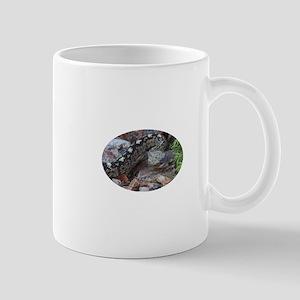 A Beautiful Viper Mug
