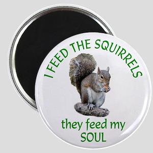 Squirrel Feeder Magnet