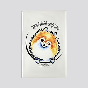 Pomeranian IAAM Rectangle Magnet
