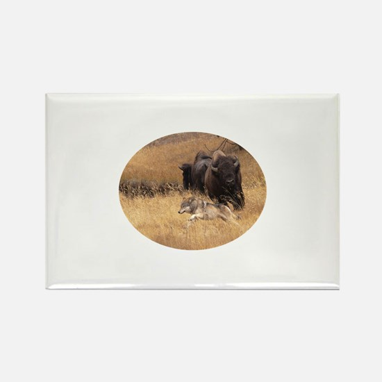wolf and bison Rectangle Magnet
