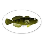 Banded Sculpin Sticker (Oval 50 pk)