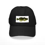 Banded Sculpin Black Cap