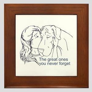 N GreatOnes Framed Tile
