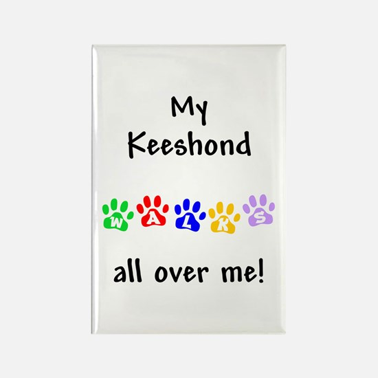 Keeshond Walks Rectangle Magnet