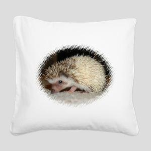 Pretty Pinto Hedgehog Square Canvas Pillow