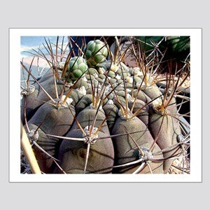 Cactus World Small Poster