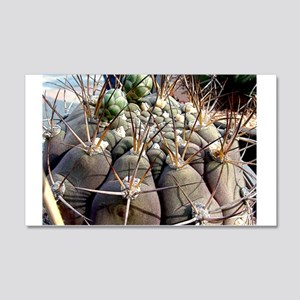 Cactus World 20x12 Wall Decal