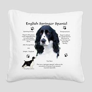 Springer 1 Square Canvas Pillow