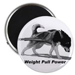 """Weight Pull Power 2.25"""" Magnet (10 pack)"""