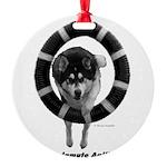 Malamute Agility Round Ornament