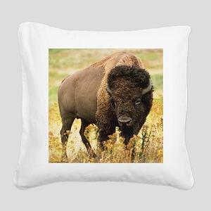 Buffalo Square Canvas Pillow