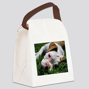 Baby Rufus Grass copy Canvas Lunch Bag