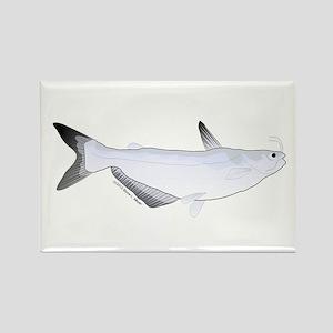 Blue Catfish fish Rectangle Magnet
