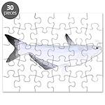 Blue Catfish fish Puzzle