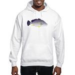 Freshwater Drum fish (aka Sheephead) Hooded Sweats