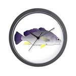 Freshwater Drum fish (aka Sheephead) Wall Clock