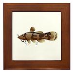 Madtom Catfish Framed Tile