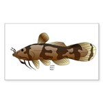 Madtom Catfish Sticker (Rectangle 50 pk)