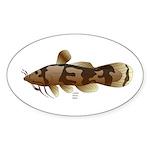 Madtom Catfish Sticker (Oval 50 pk)