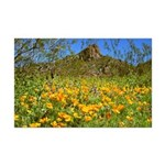 Picacho Peak Gold Poppies Mini Poster Print