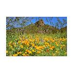 Picacho Peak Gold Poppies Mini Poster Print