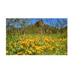 Picacho Peak Gold Poppies 35x21 Wall Decal