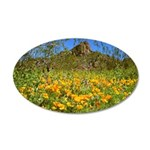Picacho Peak Gold Poppies 35x21 Oval Wall Decal