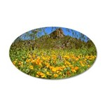 Picacho Peak Gold Poppies 20x12 Oval Wall Decal