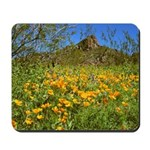 Picacho Peak Gold Poppies Mousepad