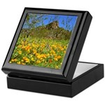 Picacho Peak Gold Poppies Keepsake Box