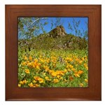 Picacho Peak Gold Poppies Framed Tile