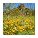 Picacho Peak Gold Poppies Tile Coaster