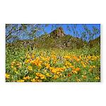 Picacho Peak Gold Poppies Sticker (Rectangle 10 pk