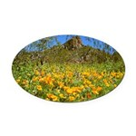 Picacho Peak Gold Poppies Oval Car Magnet