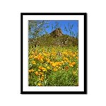Picacho Peak Gold Poppies Framed Panel Print